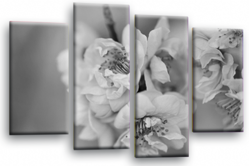 Floral Flower Wall Art Picture White Grey Spring Blossom Print